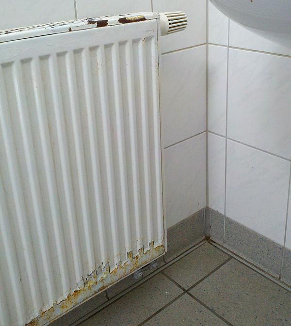 Sehr Heizkörper rostfrei - Badheizkoerper-Edelstahl.de PX87